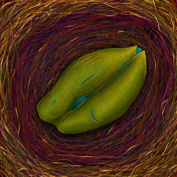 Seed - photoshop drawing by Nicole Barker