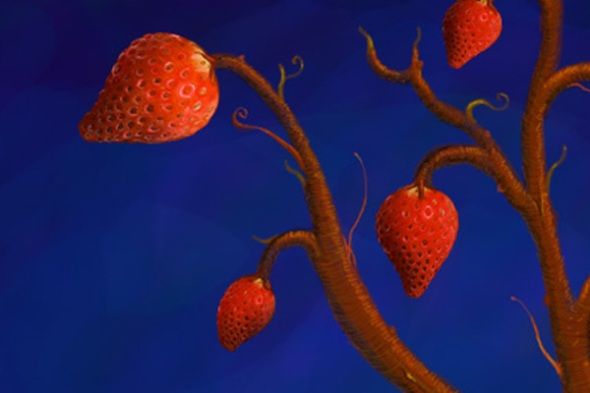 Strawberry - photoshop painting detail 3 by Nicole Barker