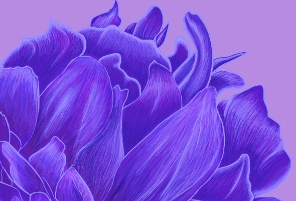Flower Heart by NicoleBarker - crop 1