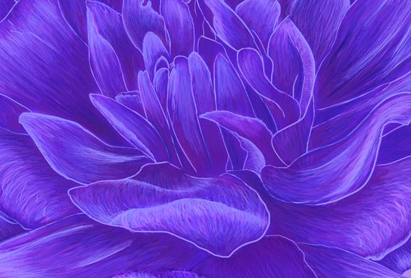 Flower Heart by NicoleBarker - crop 2