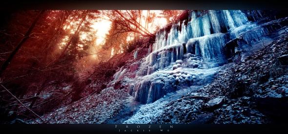 Frozen photo by Jackie Wu